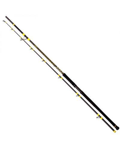 Wędka Black Cat Passion Pro DX Long Range 3,30m 600g 2pc